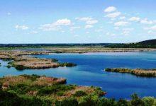 Photo of Биосферен резерват Сребърна – с. Сребърна